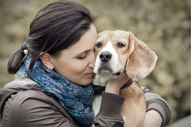 Most dogs don't love being hugged