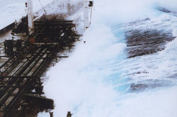 Rogue waves exist and they are horrifying