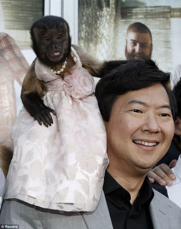 Crystal The Monkey – Earned $12,000 Per Episode