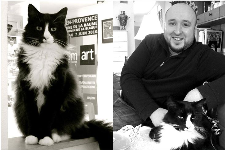 Henri, Le Chat Noir – Earns $1,000 A Week