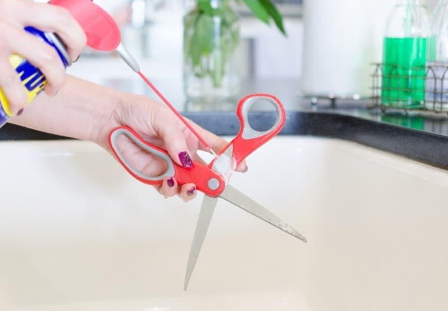 Oiling Scissors