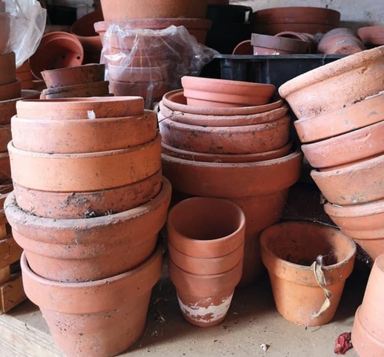 Separating Flower Pots